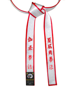 Deluxe Satin Silver Master Belt with Red Border