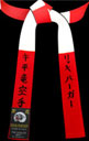Special Panel: Red & White Master Panel Belt with Solid Back