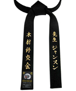 Black Belt with Metallic Gold Embroidery