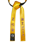 Deluxe Satin Gold/Black Belt