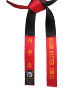 Deluxt Satin Red & Black Panel Belt